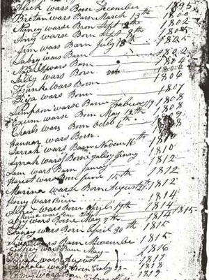 Slave Birth Register